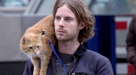 """Morto il gatto del libro (e del film) """"A spasso con Bob"""": salvò la vita a un artista di strada"""